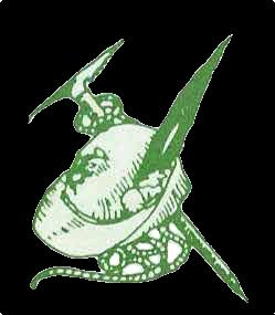Cappello Alpino con corda e pistocco